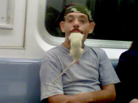 stuff-you-see-on-public-transport-22