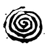 Espiral negra
